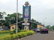 list of courses offered in OAU